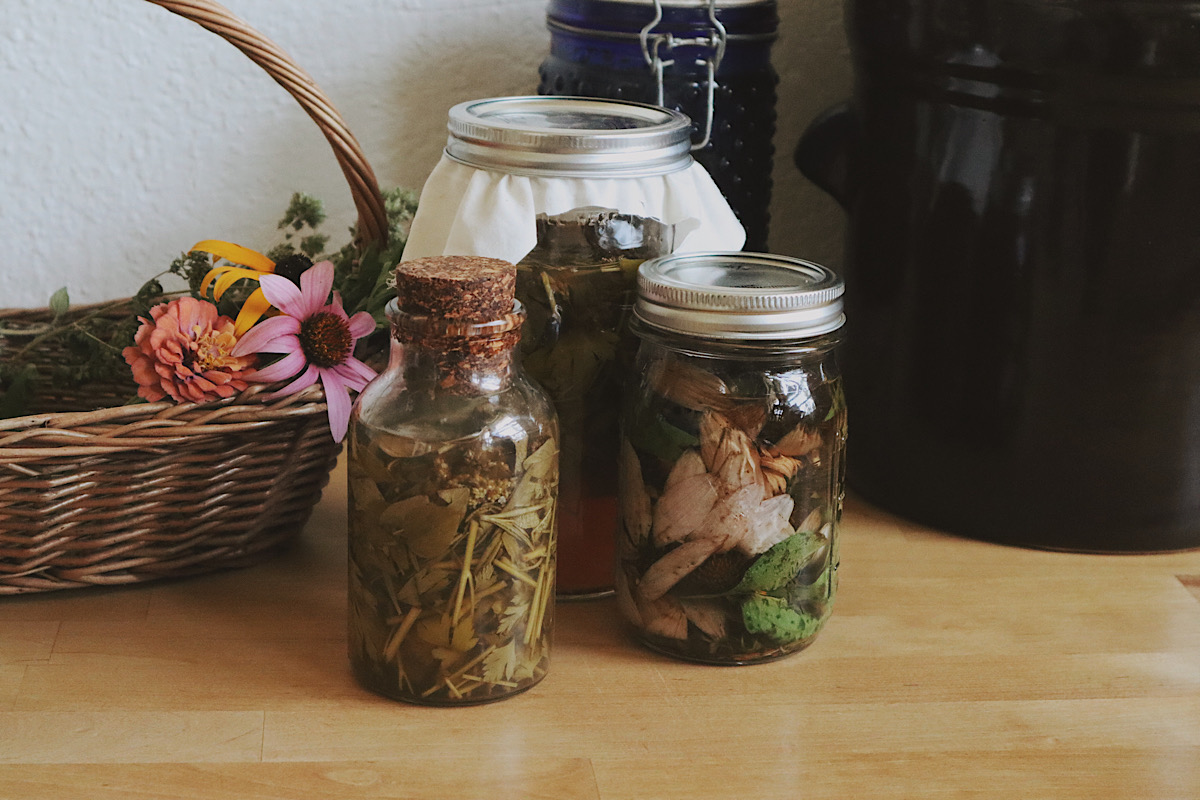 Verity Folk School herbal remedies for immune support in glass jars on a wooden counter
