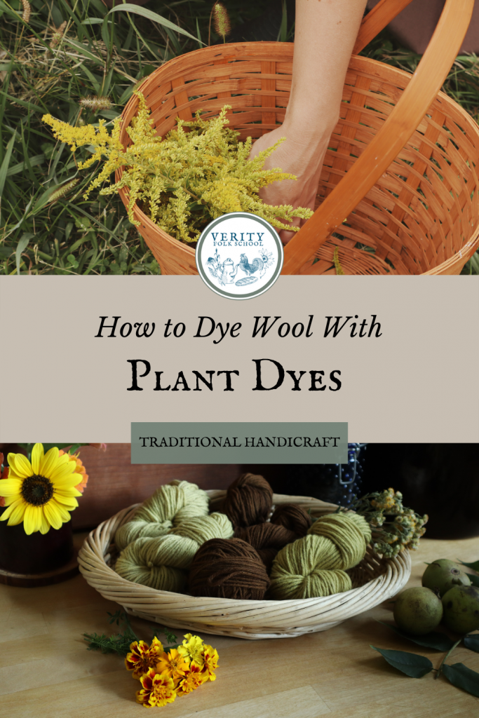 Verity Folk School Dyeing wool naturally with plants pin